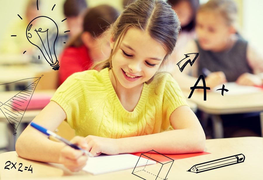 SATs 2019 Practice Quiz