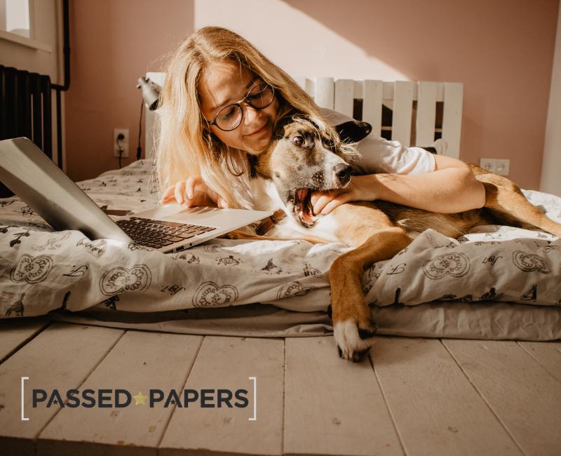 English writing skills. Woman on laptop with dog.