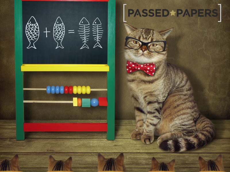 UKMT Maths Challenge interest in real life maths. Cat with abacus and blackboard.